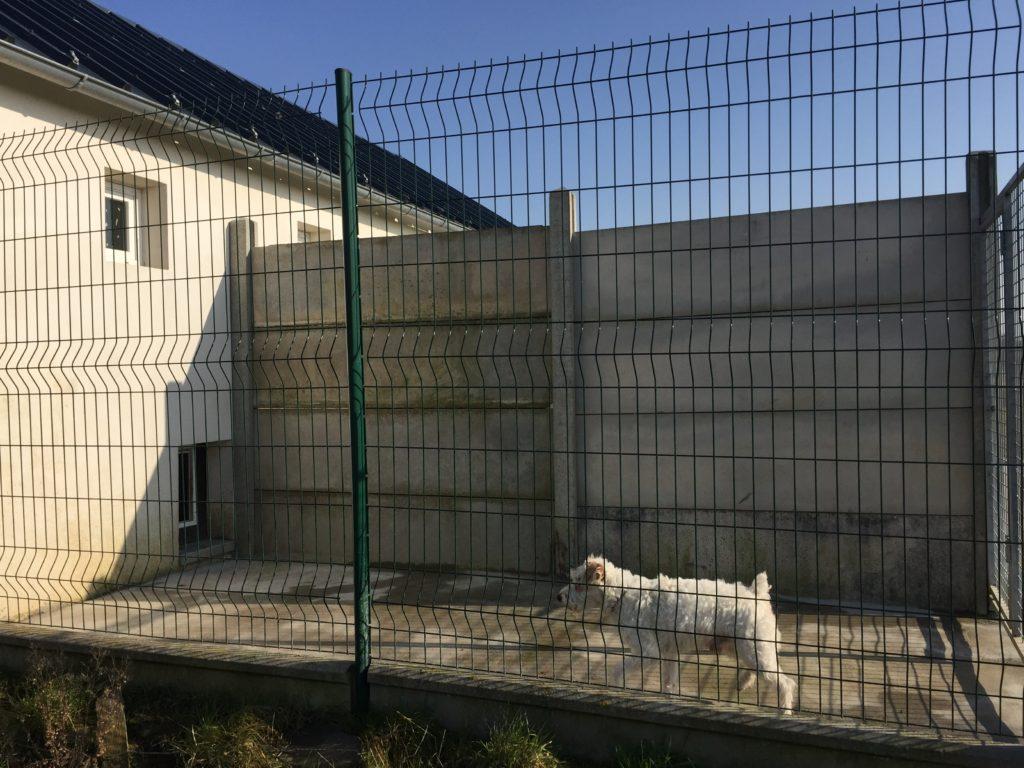 Pension canine - Extérieur d'un box